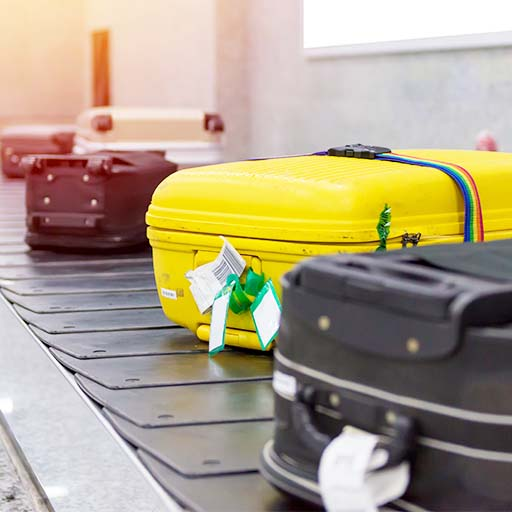 Passenger Bags & Luggage Inspection